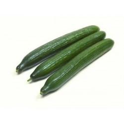 Concombre long lisse